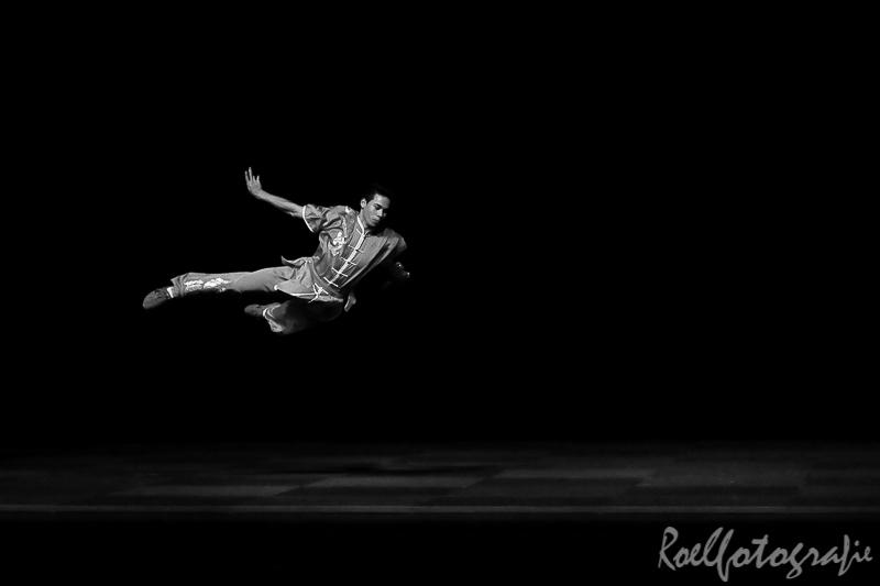 Gala der Gevechtskunsten Budo Ryu 2014-roelfotografie-1109