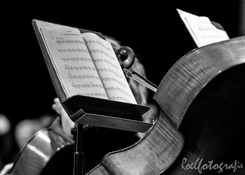concert Vrie en Vrij Sittard-roelfotografie-672-2